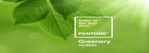 "Pantone Farbe des Jahres ""Greenery"""