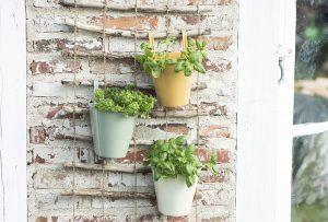 Balkon gestalten mit Pflanzen